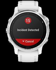6s-incident-56ac24dd-31f9-44ed-89a0-9a3bcbb1da75