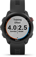 training-effect-R_forerunner245Music_OF_1001-0503ce3a-0176-4902-b65c-0c127fc94733 (1)
