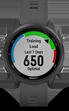 training-load-v3-be39900e-915b-482e-8081-d89f228c2d16